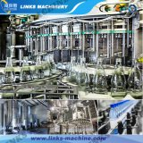 Volles Automatic Liquid Filling Plant für Low Investment Factory
