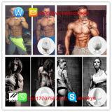 Polveri anaboliche steroidi grezze Stanozolo/Winstrol per il muscolo magro