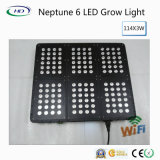 Hohe Leistung 144*3W LED wachsen hell (Neptun 6 Serien)