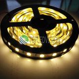 O Ce, RoHS aprovou a luz de tira flexível 60LEDs/M do diodo emissor de luz SMD5054 para a iluminação decorativa