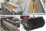 産業Appleのフルーツのワックスの磨く機械ローラーのブラシ掛け清浄のローラーのブラシ