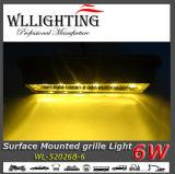 6W de Oppervlakte van het Traliewerk van Warnig zet LEDs op