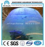 O fabricante profissional do aquário proporciona o serviço técnico e as folhas acrílicas do espaço livre têm a experiência rica no projeto do aquário