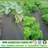 Couverture de plante d'agriculture non tissée en polypropylène Spunbond