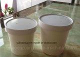 Taza de papel de la sopa con la tapa de papel