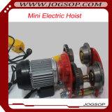 Электрическая лебедка 100kg PA оптовой низкой цены миниая
