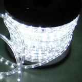 IP65 impermeabilizan venta directa de la luz de la cuerda de Y2 LED con el CE RoHS