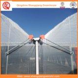 설치를 위한 농업 다중 경간 플라스틱 온실