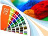De Deklaag van het Poeder van de Kleur van Ral met Superieur Anticorrosief Bezit