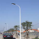 Luz de rua solar do diodo emissor de luz da venda quente 6m por 5 anos de luz de rua solar do diodo emissor de luz da garantia
