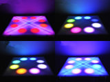 Groothandel Indoor 36W LED Flower Dance Floor podium in het licht