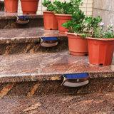 단계 층계, 안뜰, 정원, 경로, 현관을%s 태양 안전 빛 8 LED IP65 무선 방수 옥외 센서 움직임 벽 빛