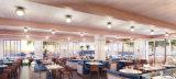 백색 단단한 나무로 되는 가구에 의하여 주문을 받아서 만들어지는 대중음식점 의자 및 테이블