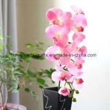 11 цветок искусственних цветков орхидеи Phalaenopsis оптовой продажи фабрики головок декоративный