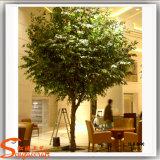 Albero artificiale del Ficus della vetroresina per la decorazione del ristorante