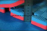 Stuoia della gomma piuma della stuoia di puzzle di EVA per l'esportazione