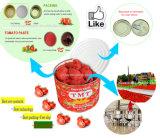 De Ingeblikte Tomatenpuree van het Merk van Salsa Tomatenpuree