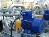 Bomba Process do produto químico e do petróleo