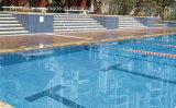 Ceramisch Mozaïek voor de Tegel van het Zwembad (FYSC48)