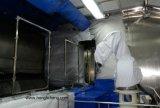 Loja de pintura automática do robô Turnkey para as peças do carro