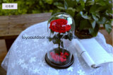 A flor Handmade preservou a flor Rosa