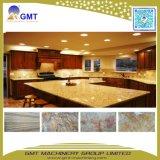 Lopende band van het Comité van de Muur van het Blad Faux van pvc de Kunstmatige Marmeren Plastic