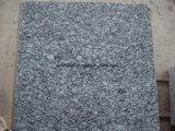 Natuurlijke Steen van Tegel/Plak van het Graniet van de Golf van China de de Witte