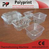 Pp, PS, contenitore di plastica della frutta dell'animale domestico che fa macchina (PP-750)