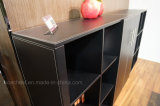 Популярный высокий шкаф для картотеки комнаты офиса хорошего качества (C8)