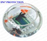 De waterdichte Kabeldozen van de Cellen van de Lading Voor het Wegen Schalen (BJCPS014B)