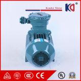 전기 폭발 방지 감응작용 AC 모터 400V/415V/440V