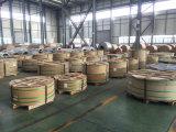 Bobinas do alumínio do revestimento da cor para o mercado de Médio Oriente