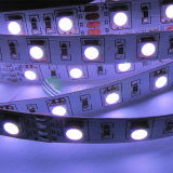 Solas tiras del color los 60LEDs/M SMD5050 RGB LED
