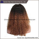 Parrucca della parte anteriore del merletto della parrucca dei capelli umani di due colori