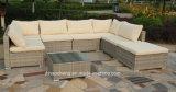 屋外の藤の庭の家具およびPEの藤のソファー