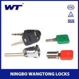 만능 열쇠 및 코어 이동할 수 있는 중요한 시스템을%s 가진 자물쇠 Pin 래치