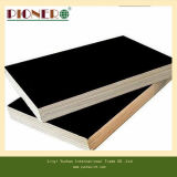 Film Faced Plywood avec Two Heure Pressed pour Construction ou Building