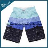 Os Mens de Inone W05 nadam calças curtas dos Shorts ocasionais da placa