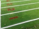 Het Kunstmatige Gras van het Voetbal van de fabriek direct van China met Goede Prijs