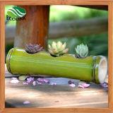Pote de planta de suculento / Pote de flores de bambu artesanal