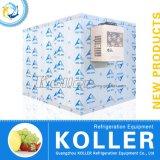 Congelador cúbico de 30 medidores para o armazenamento da carne/peixes