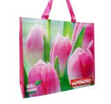 Sacos de compra reusáveis amigáveis do verde do mantimento de Eco (LJ-168)