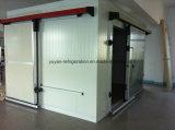 Panneaux en polyéthylène pour piscines et congélateurs