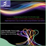 Wasserdichtes LED Neonlicht RGB-