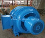 Série do júnior 380 V 6 quilovolts motor do anel deslizante de rotor de ferida de 10 quilovolts