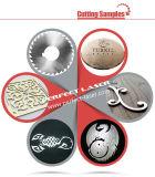 Macchina per il taglio di metalli del laser del acciaio al carbonio dell'acciaio dolce dell'acciaio inossidabile