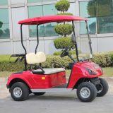 Chariot de golf électrique à piles approuvé par CE du fil 2 Seater (DG-C2)