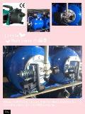 (SDP600-10ST) Насос двигателя сада нержавеющей стали