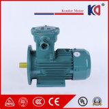 Motor de C.A. à prova de explosões elétrico 400V/415V/440V da indução