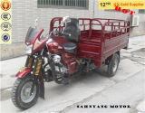 Load pesante 250cc Reverse Motor Cargo Tricycle